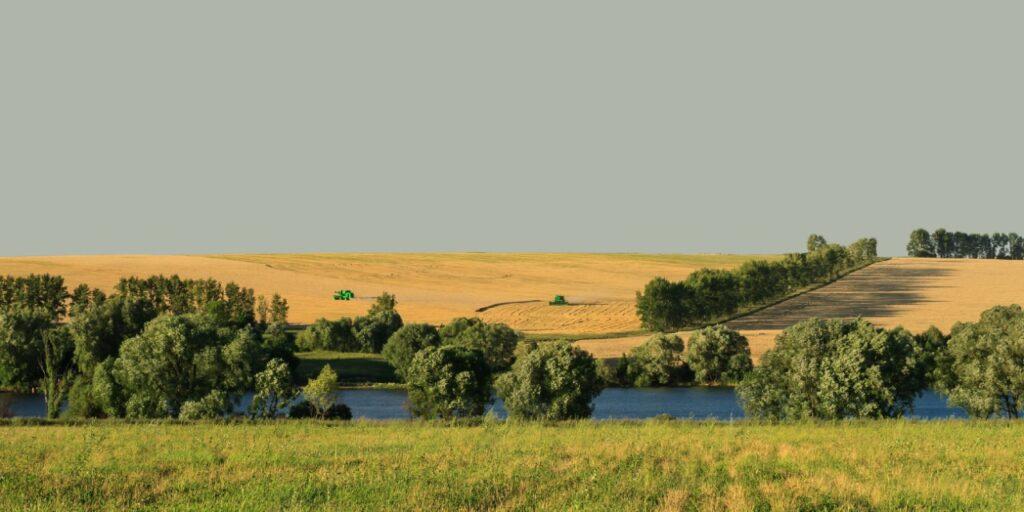 Дайджест российских СМИ от «Агроэкспорта» (22-28 июля 2021 года)